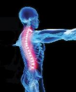 Squirrel HIll Chiropractic Spinal Care